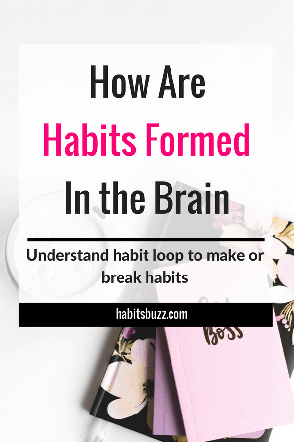 To make or break habits, you have to know how habits are formed in the brain (habit loop explained). #habits