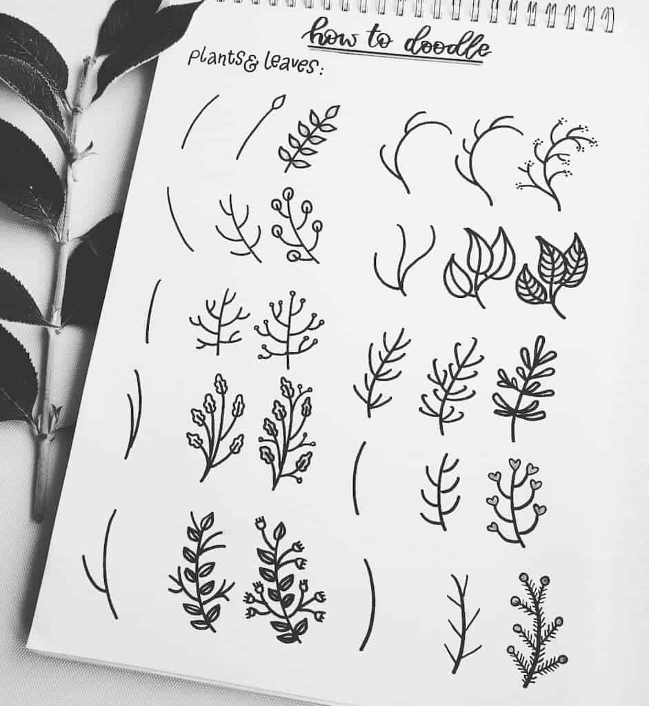 step-by-step bullet journal doodle tutorial - leaves and branches doodles