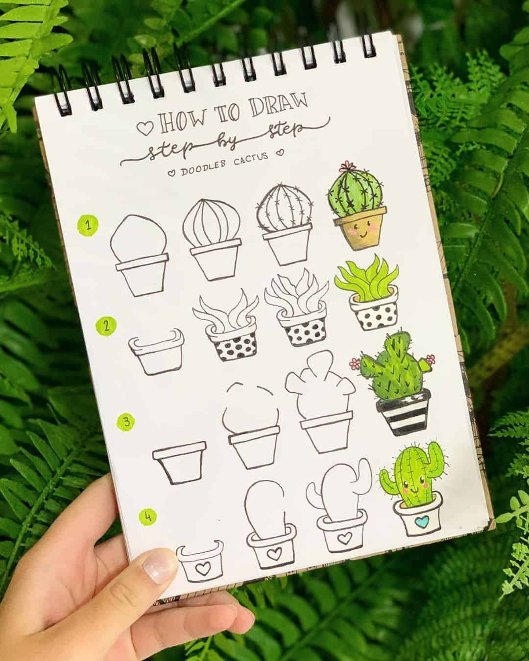 step-by-step bullet journal doodle tutorial - cactus plant doodles